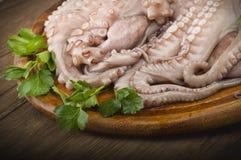 新鲜的章鱼 免版税库存照片