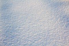 新鲜的第一雪背景纹理  免版税库存图片