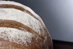 新鲜的糖小圆面包侧视图  图库摄影