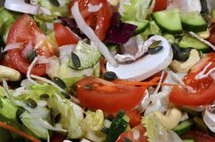 新鲜的素食主义者沙拉 免版税库存照片