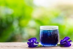 新鲜的紫色蝴蝶豌豆或蓝色豌豆花和汁在玻璃 图库摄影