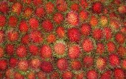 新鲜的红毛丹在市场上 库存图片