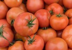 新鲜的红色健康蕃茄 免版税库存图片