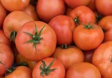 新鲜的红色健康蕃茄 库存照片