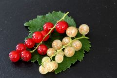 新鲜的红色和白色无核小葡萄干在板岩板材结果实 库存照片
