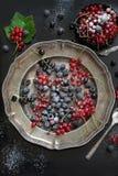 新鲜的红色和黑醋栗,黑树莓装饰糖粉末,分支在盛肉盘的红浆果在黑色 顶视图 库存照片