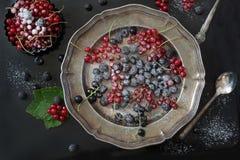 新鲜的红色和黑醋栗,黑树莓装饰糖粉末,分支在盛肉盘的红浆果在黑色 顶视图 图库摄影