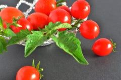 新鲜的红色小蕃茄 库存图片