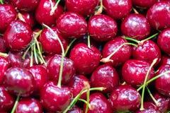 新鲜的红色成熟樱桃果子 库存照片