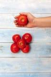 新鲜的红色有机蕃茄在有蓝色木板的手上在背景中 免版税库存图片