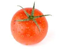 新鲜的红色湿蕃茄 库存照片