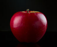 在黑色的红色苹果 免版税库存照片