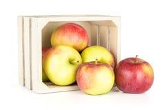 新鲜的红色苹果詹姆斯在白色追悼隔绝 图库摄影