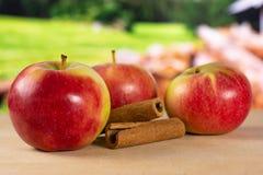 新鲜的红色苹果詹姆斯追悼与国家自然 库存照片
