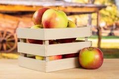 新鲜的红色苹果詹姆斯追悼与推车 免版税库存照片