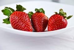 新鲜的红色草莓三 库存图片
