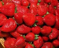 新鲜的红色草莓 免版税库存图片