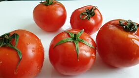 新鲜的红色蕃茄倾吐水能轮 股票视频