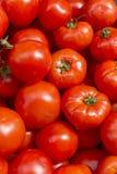 新鲜的红色蕃茄摘要果子五颜六色的样式纹理背景 免版税库存图片