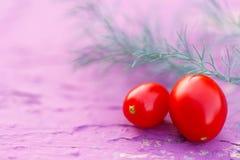 新鲜的红色蕃茄用莳萝 库存照片