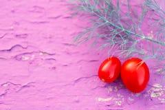 新鲜的红色蕃茄用莳萝 库存图片
