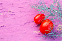 新鲜的红色蕃茄用莳萝 免版税库存照片