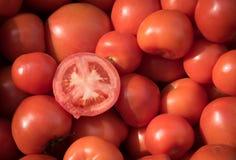 新鲜的红色蕃茄 免版税库存照片