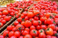 新鲜的红色蕃茄 皇族释放例证