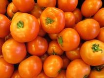 新鲜的红色蕃茄 库存照片