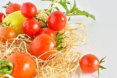新鲜的红色蕃茄 免版税图库摄影