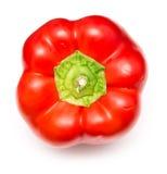 新鲜的红色辣椒的果实 免版税库存照片