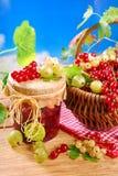 新鲜的红色,白色无核小葡萄干、鹅莓和瓶子篮子preserv 图库摄影