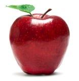 新鲜的红色Apple 库存照片