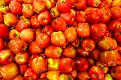 新鲜的红色Apple 免版税库存照片