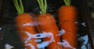 新鲜的红萝卜,水槽在厨房里,红萝卜,维生素,人的重要菜, 股票录像