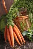 新鲜的红萝卜 免版税库存图片