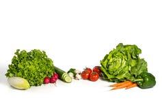 新鲜的组沙拉蔬菜 免版税库存照片