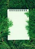 新鲜的绿色杉木离开与空的纸笔记本, Orienta 图库摄影