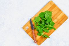新鲜的绿色荨麻叶子在一个切口木板的有在一张灰色具体桌上的一把刀子的 顶视图 免版税库存图片