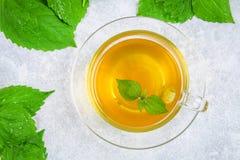 新鲜的绿色荨麻和一个清楚的玻璃杯子叶子在一张灰色具体桌上的草本荨麻茶 顶视图 免版税库存照片