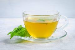新鲜的绿色荨麻和一个清楚的玻璃杯子叶子在一张灰色具体桌上的草本荨麻茶 免版税图库摄影