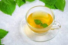 新鲜的绿色荨麻和一个清楚的玻璃杯子叶子在一张灰色具体桌上的草本荨麻茶 库存照片
