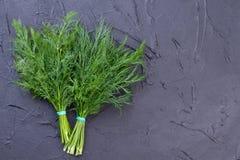 新鲜的绿色莳萝,拷贝空间 库存照片