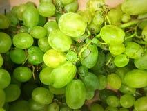 新鲜的绿色葡萄 库存照片