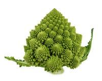新鲜的绿色romanesco硬花甘蓝花椰菜与 库存图片