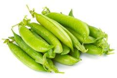 新鲜的绿豆荚 免版税库存图片