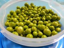 新鲜的绿豆 免版税图库摄影