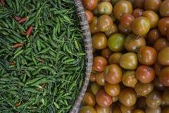 新鲜的胡椒蕃茄 库存照片