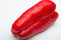 新鲜的胡椒,新鲜从庭院 免版税图库摄影