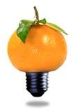 新鲜的能源 免版税库存照片
